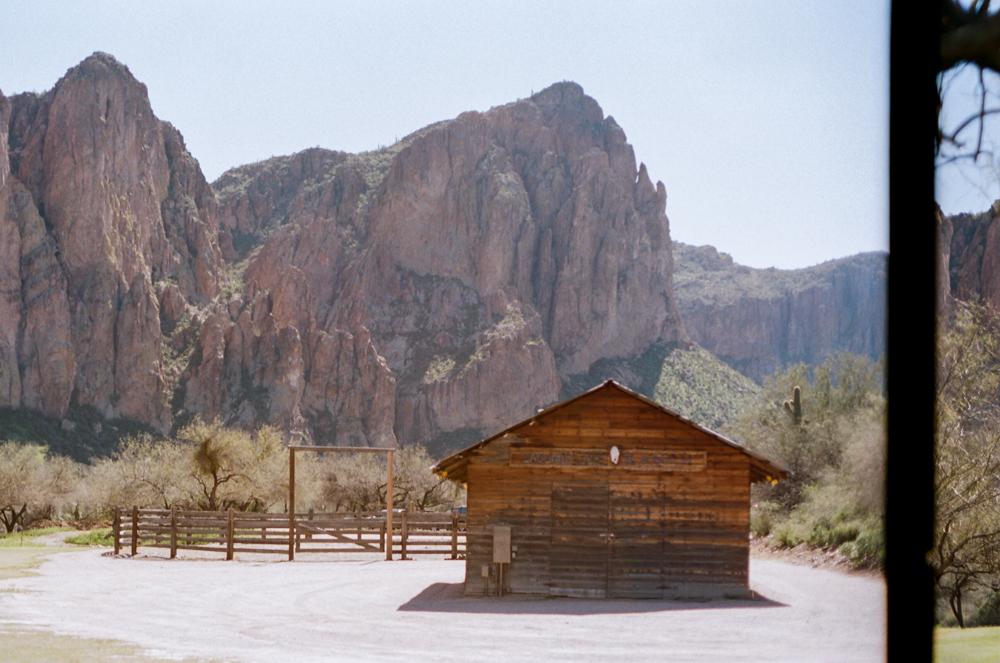 Arizona, Phoenix, Tucson, Scottsdale, Saguaro, National Park, Wild Horses, travel photography, wanderlust, film photography, 35mm, kodak portra 400, ranch life, wild west, equine photography, horse photography, mountain photography, new york city, travel blog
