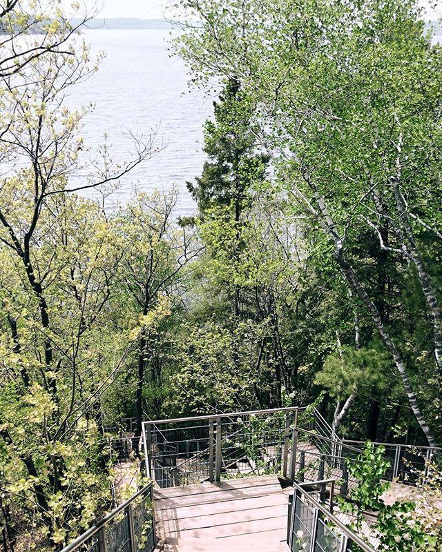 🏃🏼♀️🏃🏼♀️🏃🏼♀️🏃🏼♀️ . #run #outdoors #summer #running #instadaily #instagood #potd