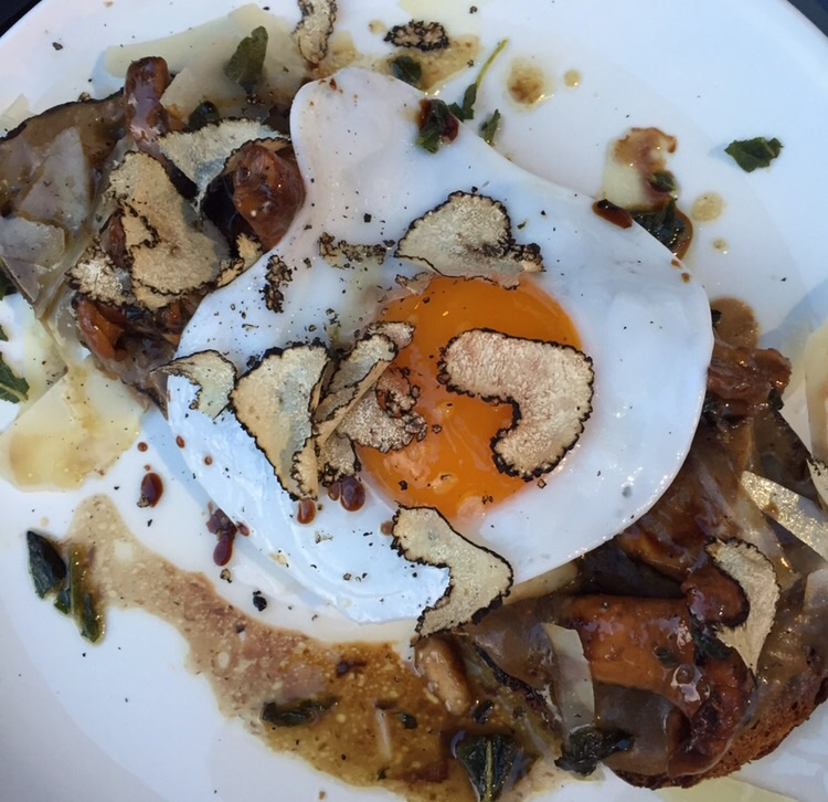 SPECIAL - truffle mushroom toast with egg