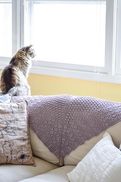 Alaria - knit by wmcurella