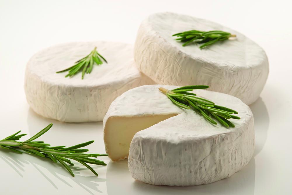 Salt Spring Cheese