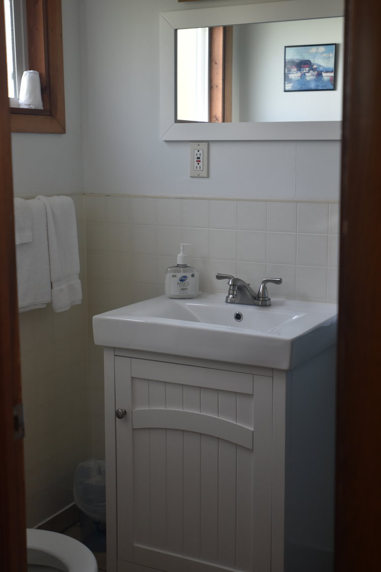 Blue Spruce Motel - Room Number 3 - Interior Bathroom.jpeg