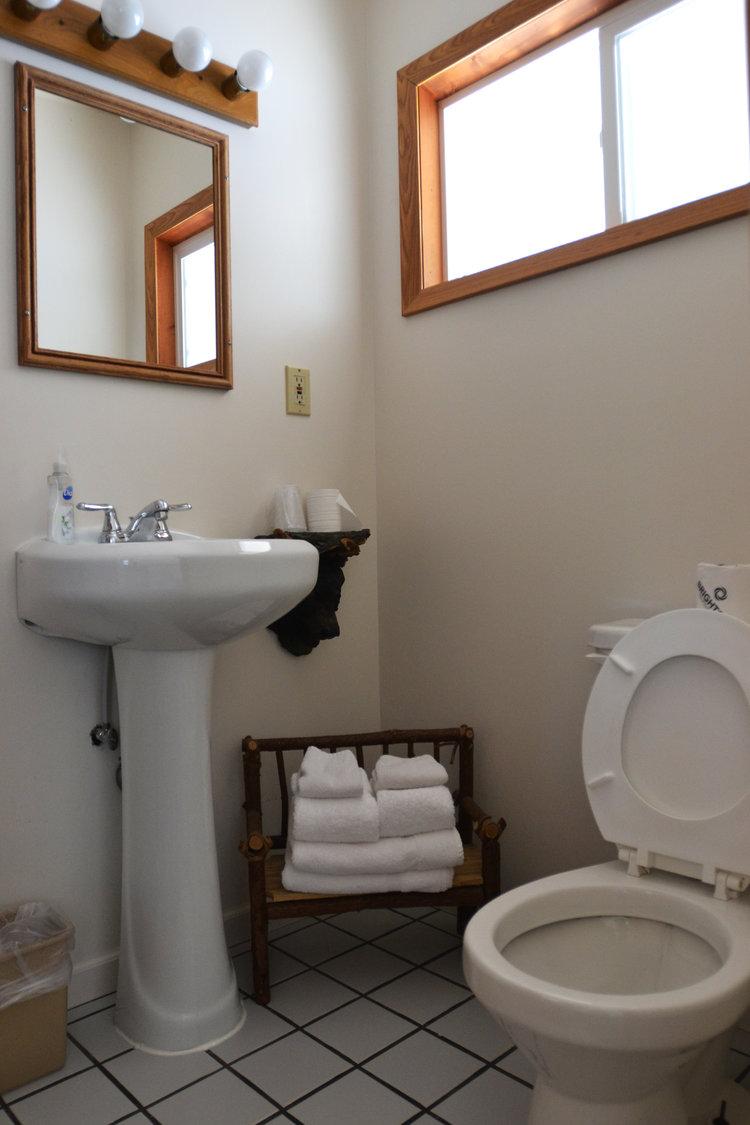 Blue Spruce Motel - Room Number 4 - Interior Bathroom.jpeg