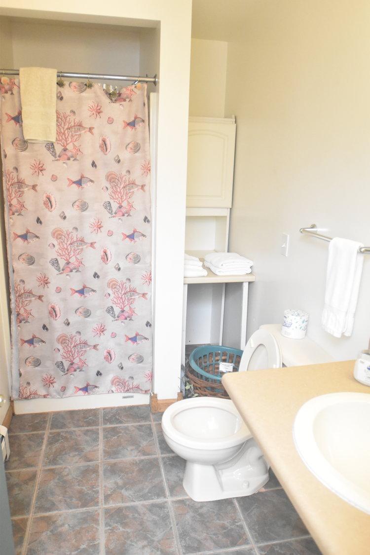 Blue Spruce Motel - Room Number 10 - Interior Bathroom with Shower.jpeg