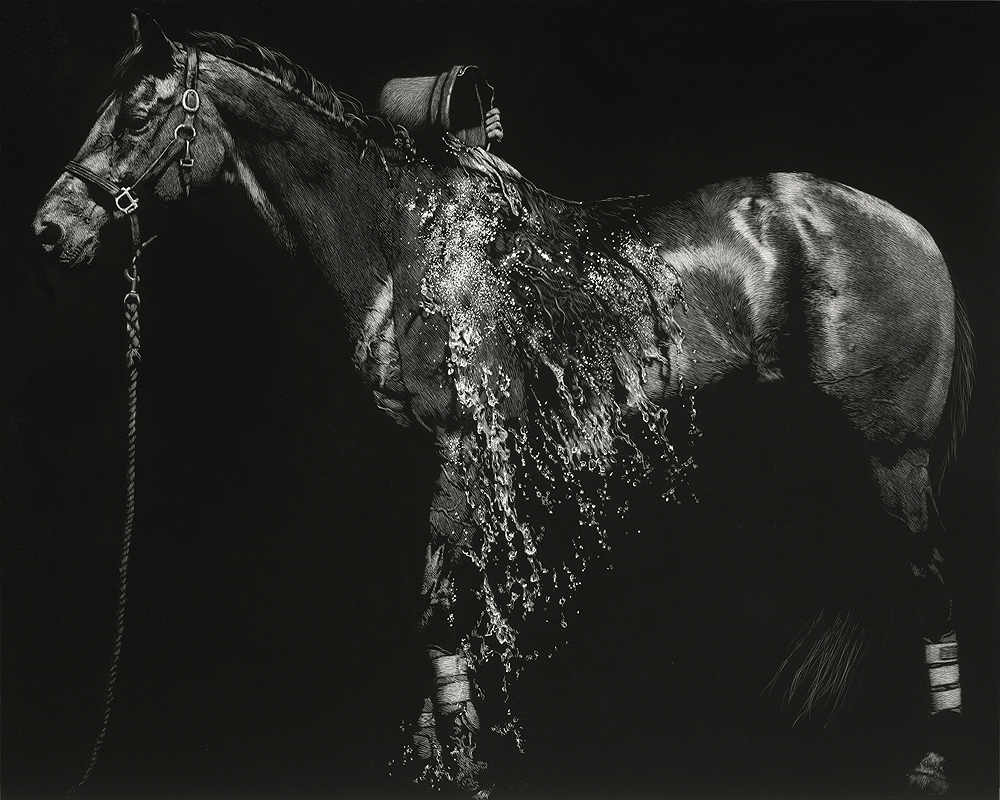 """Bucket Bath / Horseshoe Falls"", 16x20 scratchboard — $4500  Recently, I've begun exploring the depiction of water in scratchboard, which is not a natural medium in which to do this…but for some reason, I like to butt heads with challenges of this sort. The image comes from the vetbox area after the cross-country phase of a big international three-day event, when the horses are being washed, scraped, walked, and cooled down after their strenuous athletic efforts out on course."