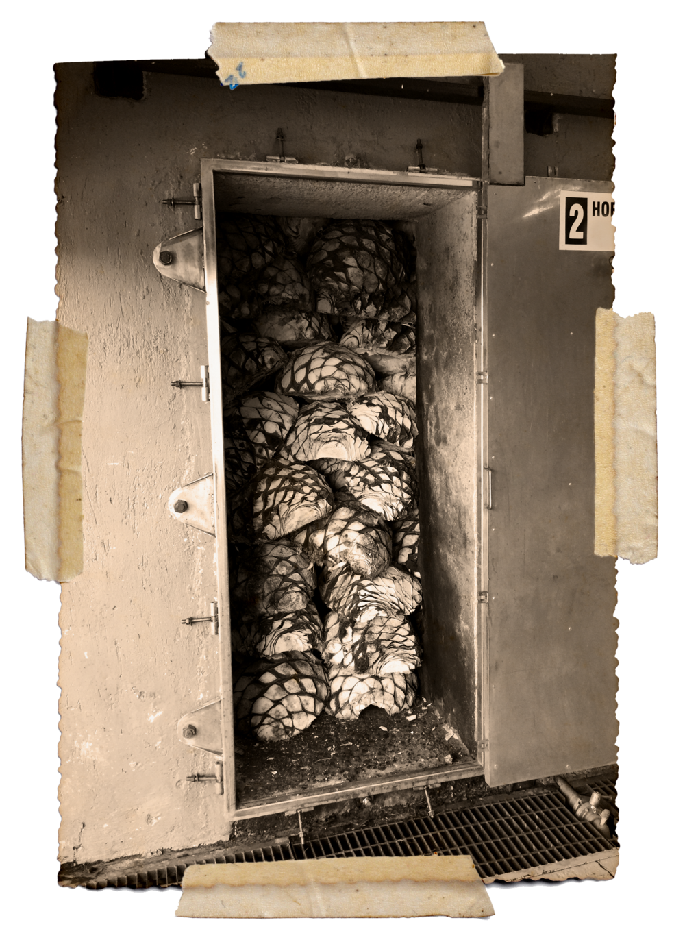 All of our agave is baked in traditional ovens for maximum flavor and depth.© Sueño de Atzo®.