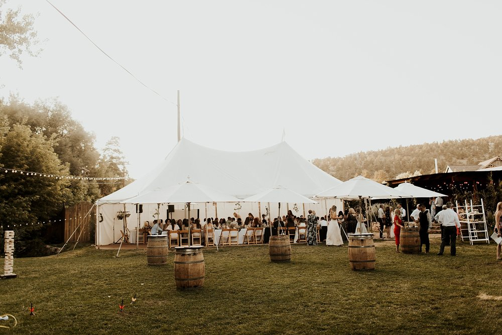 Lyons_Farmette_Wedding_Denver_Colorado_wedding078.JPG