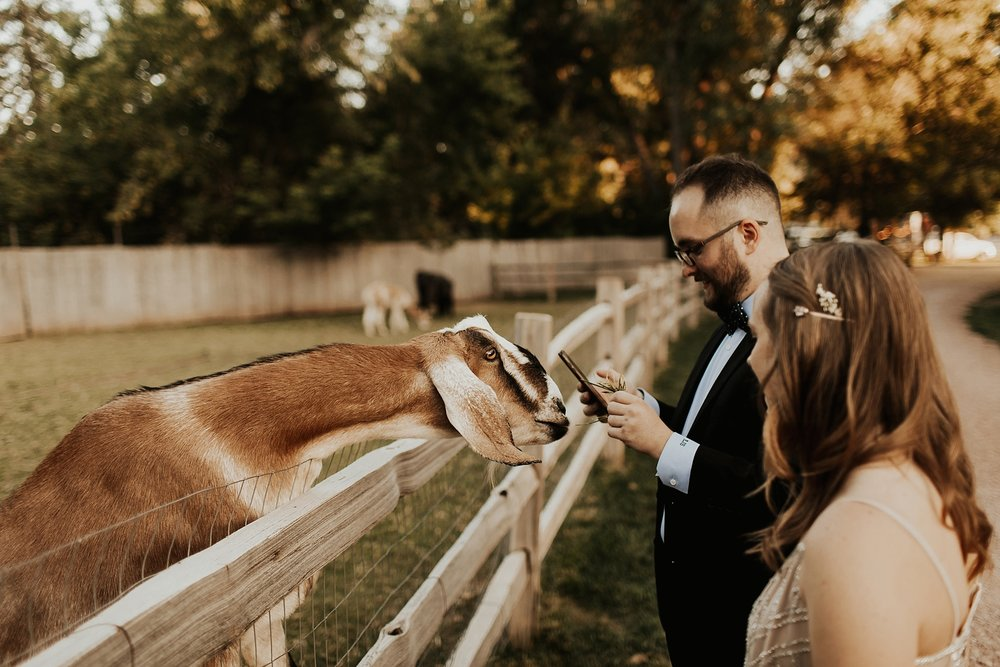 Lyons_Farmette_Wedding_Denver_Colorado_wedding079.JPG