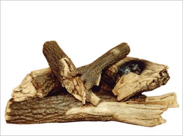 Cactus Oak