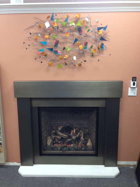 Carolina Premiere Steel Mantel Surround DV Fireplace.jpg