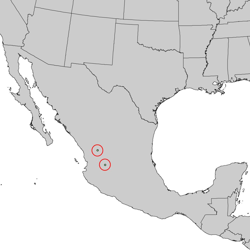 Pinus_maximartinezii_range_map_1.png