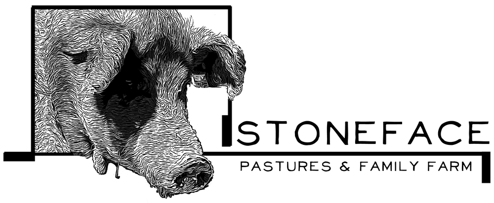 T-Squared Designs was thrilled to create the graphic identity -and web presence- for Stoneface Pastures & Family Farm. Visit the website at  www.StonefacePastures.com .