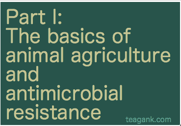The basics of animal agriculture and antimicrobial resistance