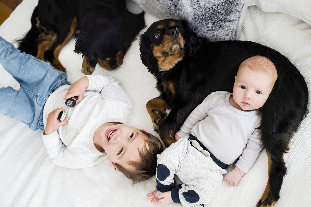 family photographer lannie