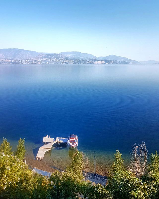 Kelowna you are marvellous🙆 From wandering in orchards, picking fresh fruit and eating 3 pints of berries in one sitting🙈 Beautiful lunch views from wineries, learning new sports behind a boat, finding little running trails, to relaxing. I may want to move here, my kind of place😍 who's with me?  Currently in Vancouver📍