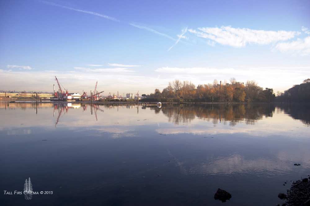The last natural bend in the old Duwamish River, and Foster Island, once part of a great mud flat in the river that where the Duwamish tribe would forage. Next to it is the construction that dominates the river today.