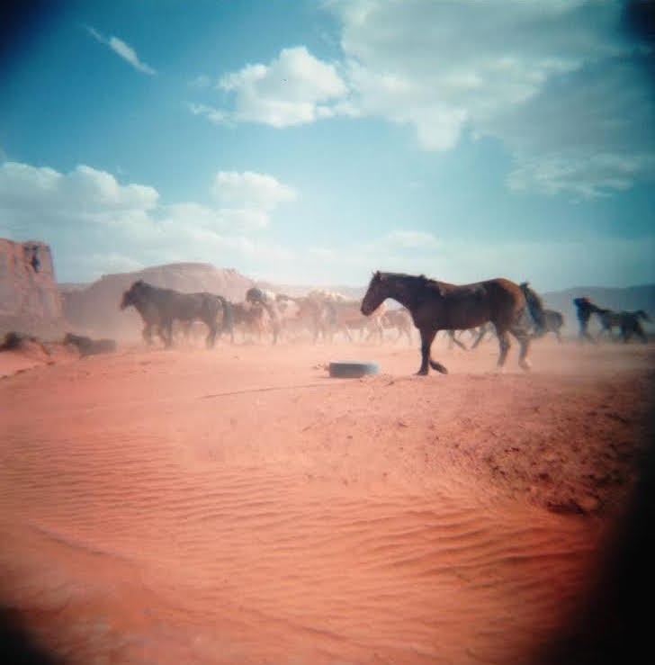 monument valley horses.jpg