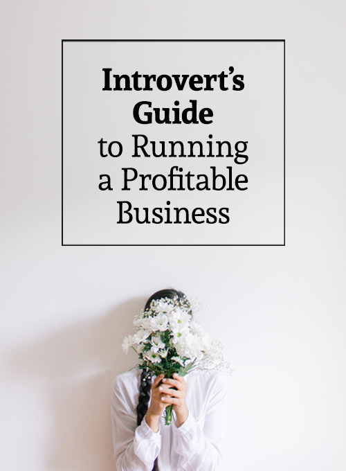 The Introvert's Guide to Running a Profitable Business - business tips for introverts