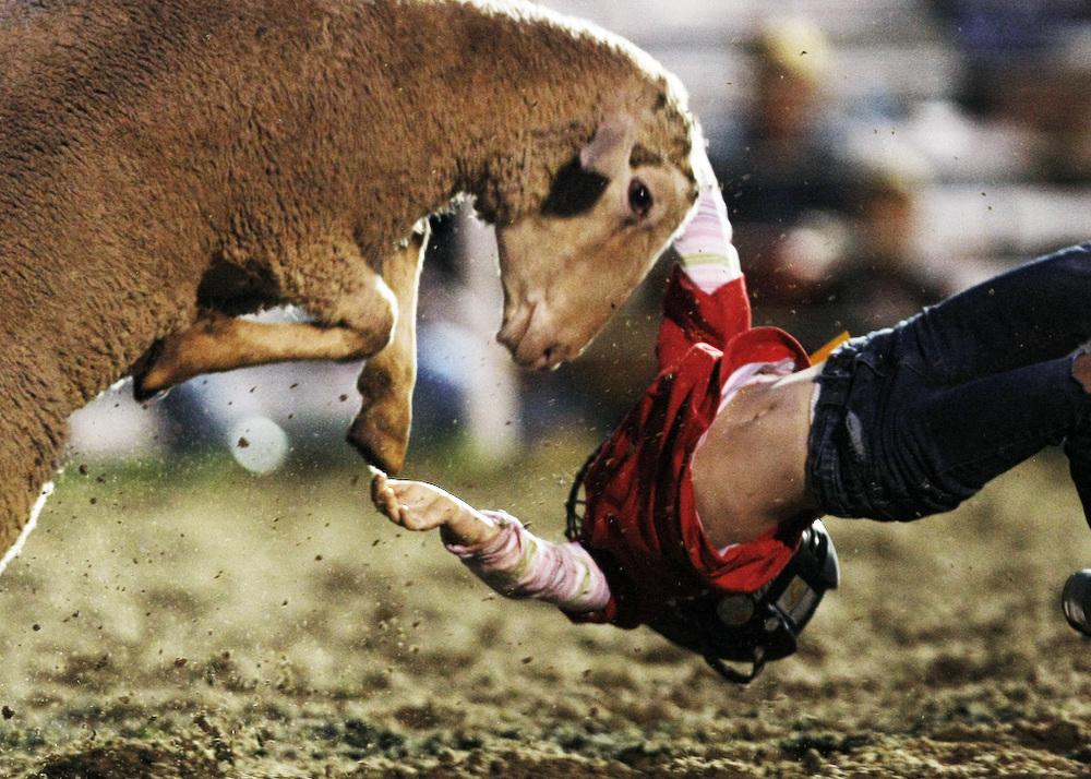 Rodeo_5.jpg