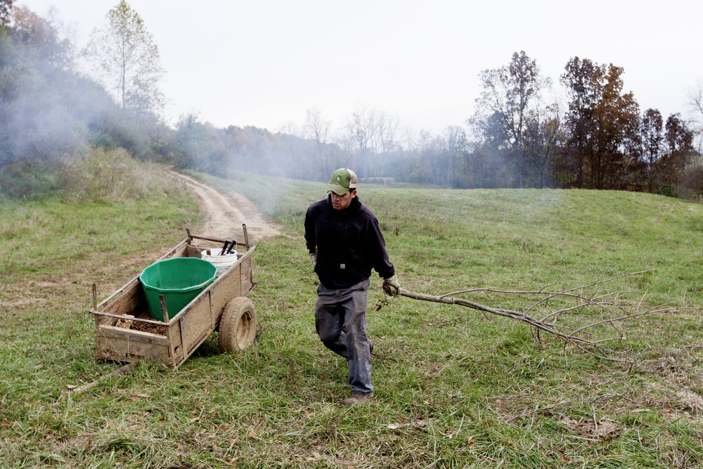 Reitano adds wood and other brush he cut away from a fence line on his farm to a fire.