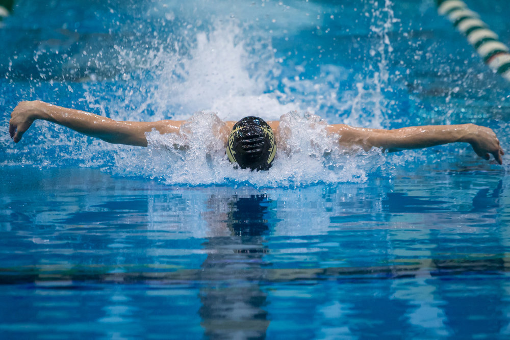Dexter's Niklas Eberly swims during the second heat of the 100 yard butterfly during the 2017 MHSAA Boys D2 Swim and Dive Championships at Eastern Michigan University on Saturday, March 11, 2017. Dexter High School's swim team won the overall championship. Matt Weigand | The Ann Arbor News