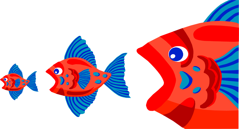 Big fish little fish and shrimp turnbull 39 s talk in for Big fish eat small fish