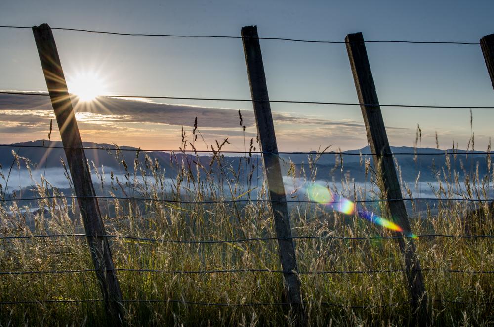 Sunrise over Te Mata peak