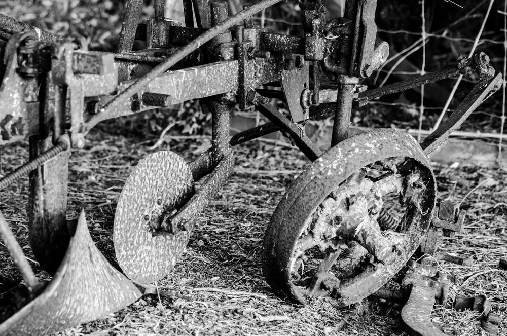 Plow rust