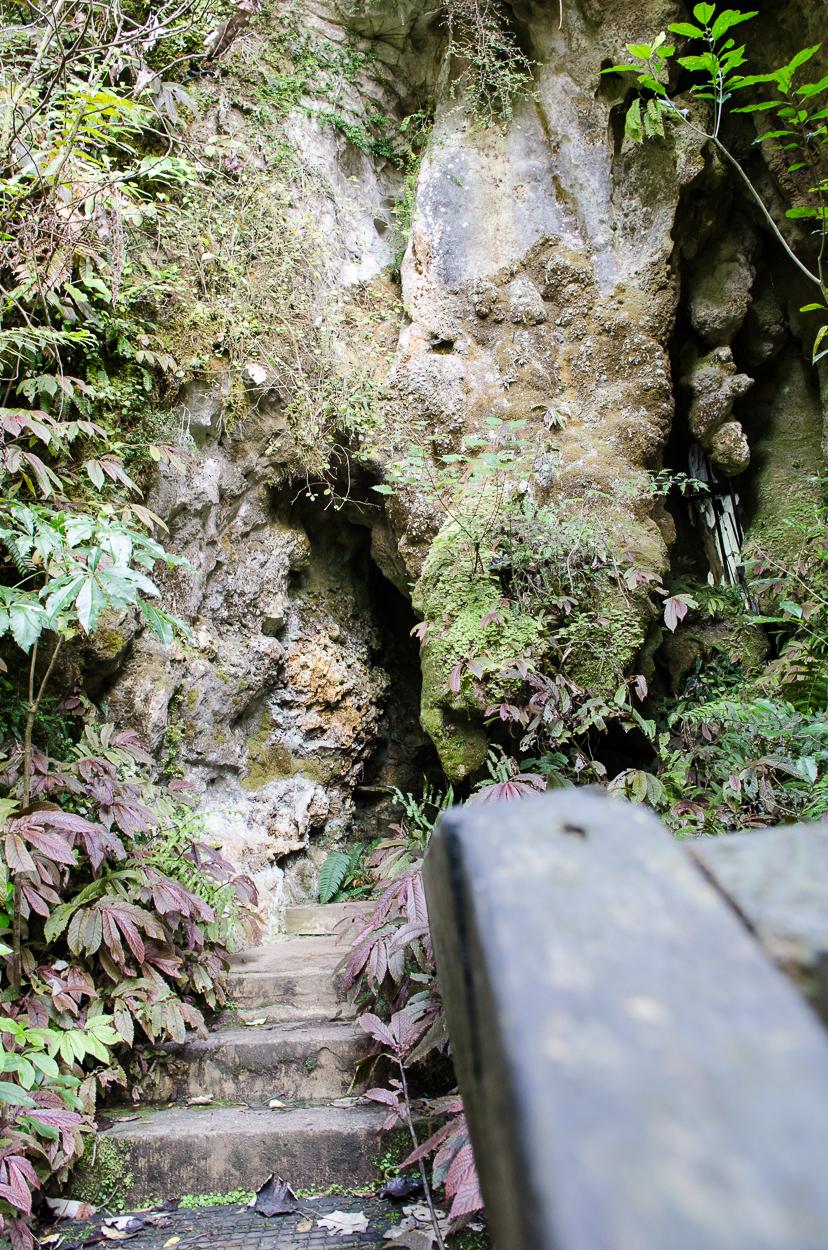 Aranui Cave-7960.jpg