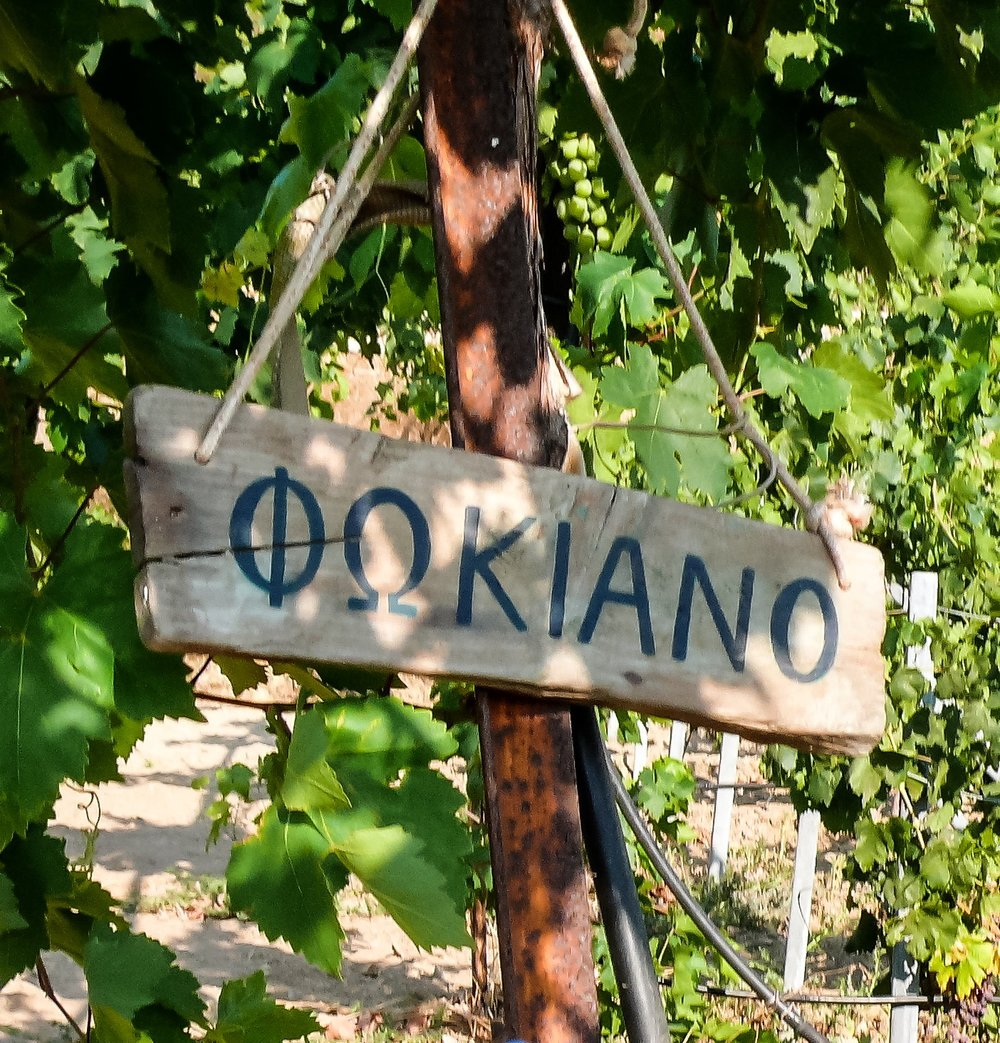 fokiano sign.jpg