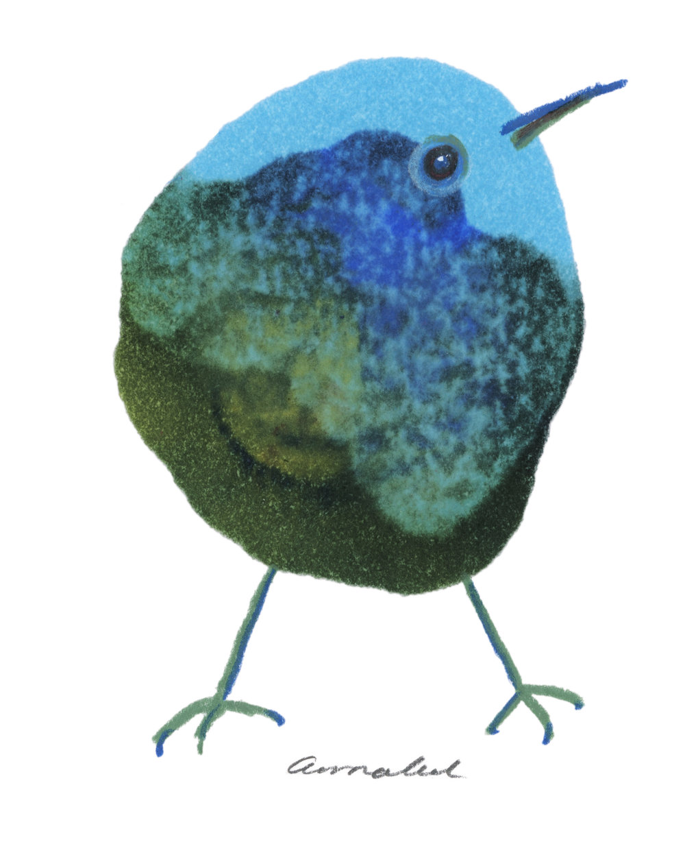 Inkdrop birds - This newest project showcases the artists love for birds, paper and colour.
