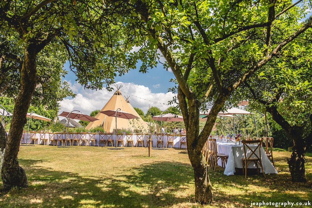 Wiltshire_wedding_Buffalo.jpg