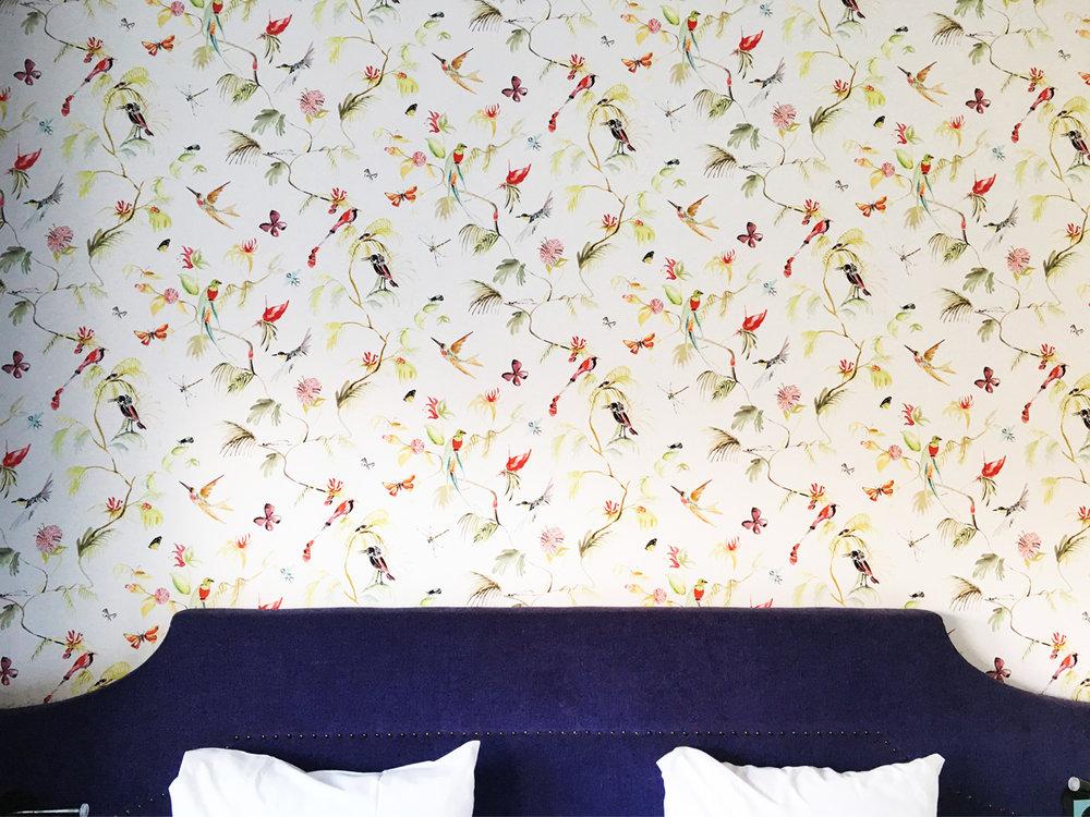 tulip-inn-room.jpg