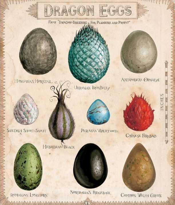 Dragon_eggs.jpg