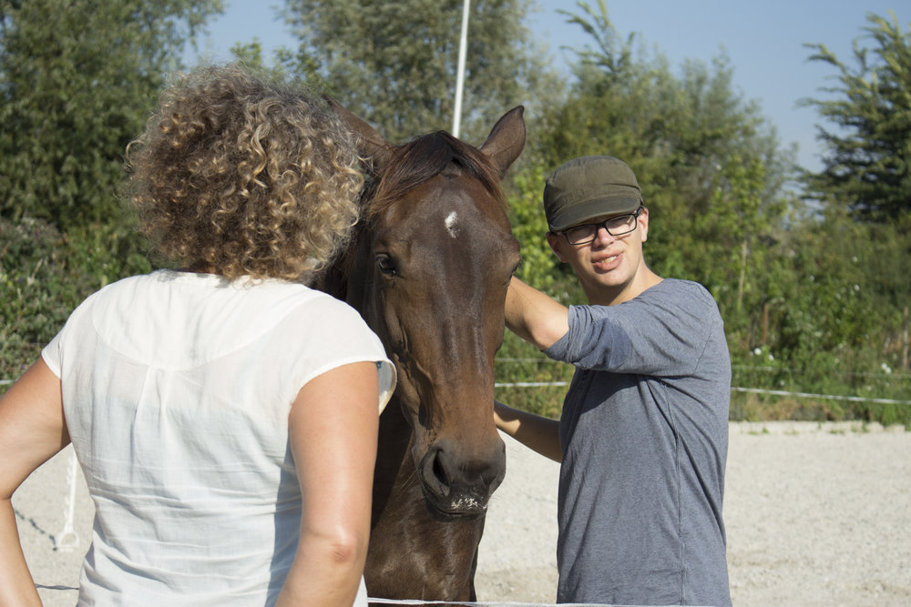 Coaching met paarden door Bramas Coaching.