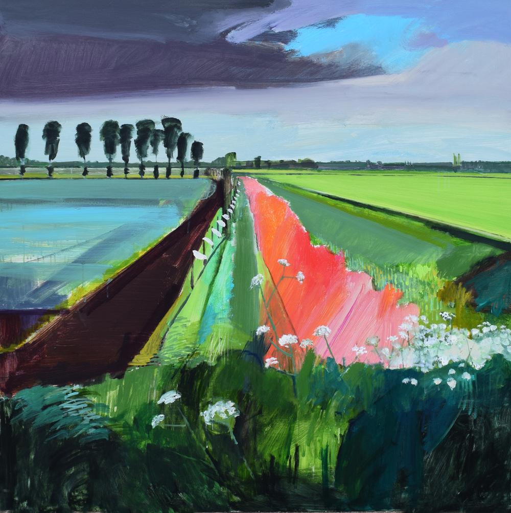 Turf field, Fodderfen Drove, Norfolk. May 2016