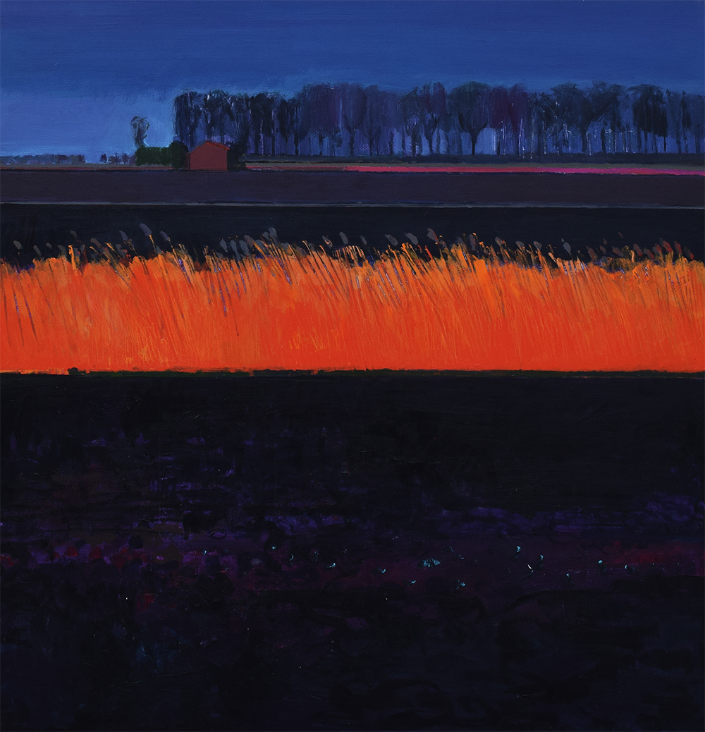 Winter evening in the Black Fens