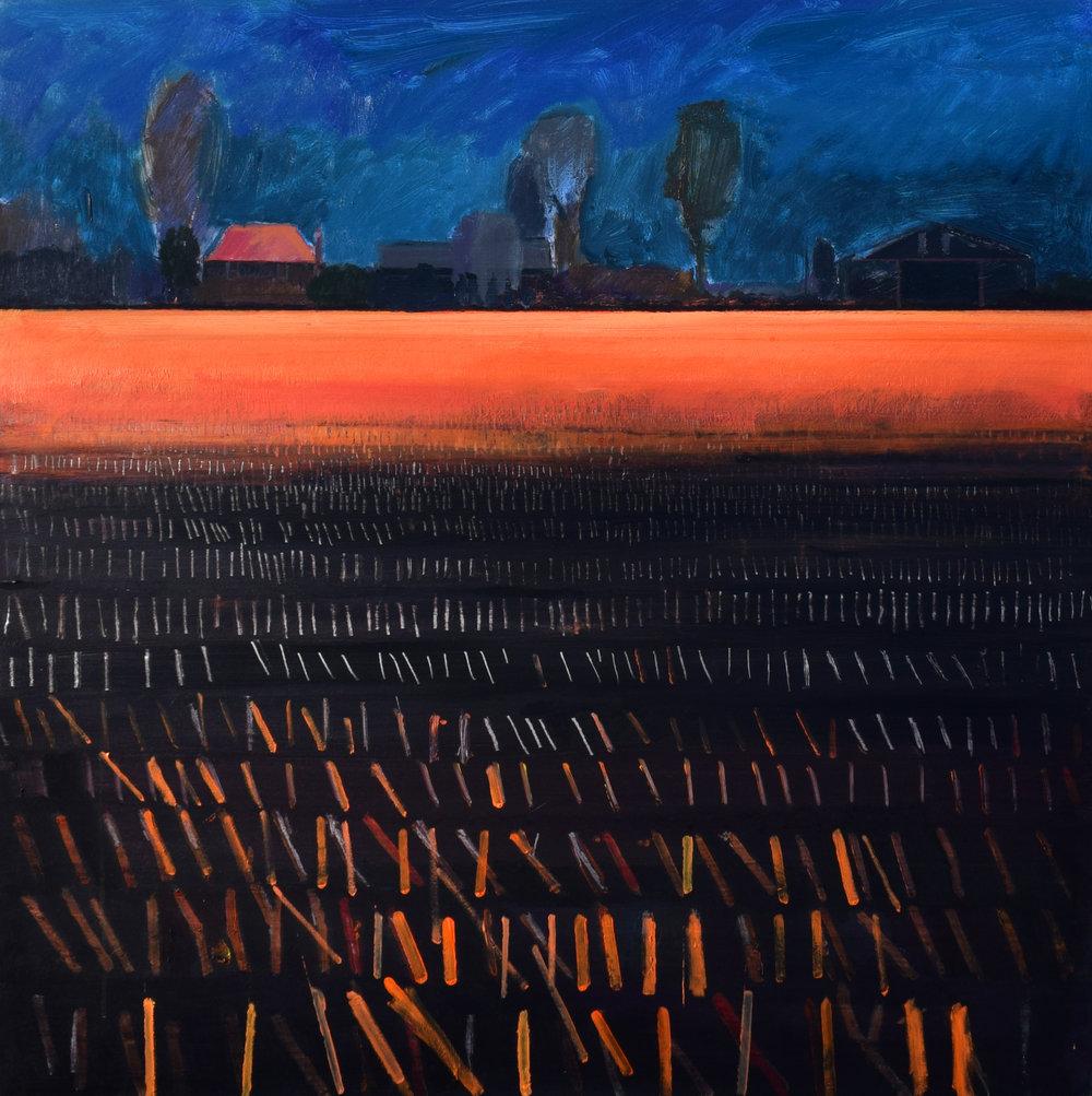 Last light on Shepherd's Fen