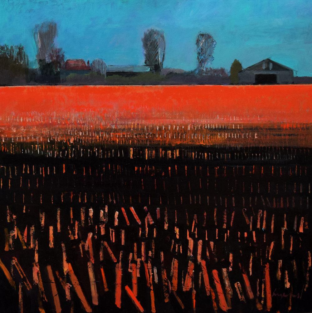 Winter evening on Shepherd's Fen