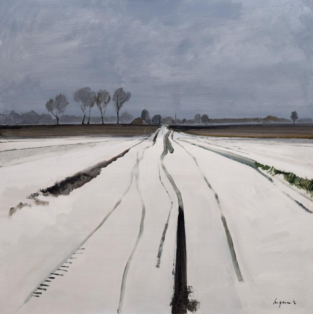 Snow tracks, Fodderfen Drove, March 2018