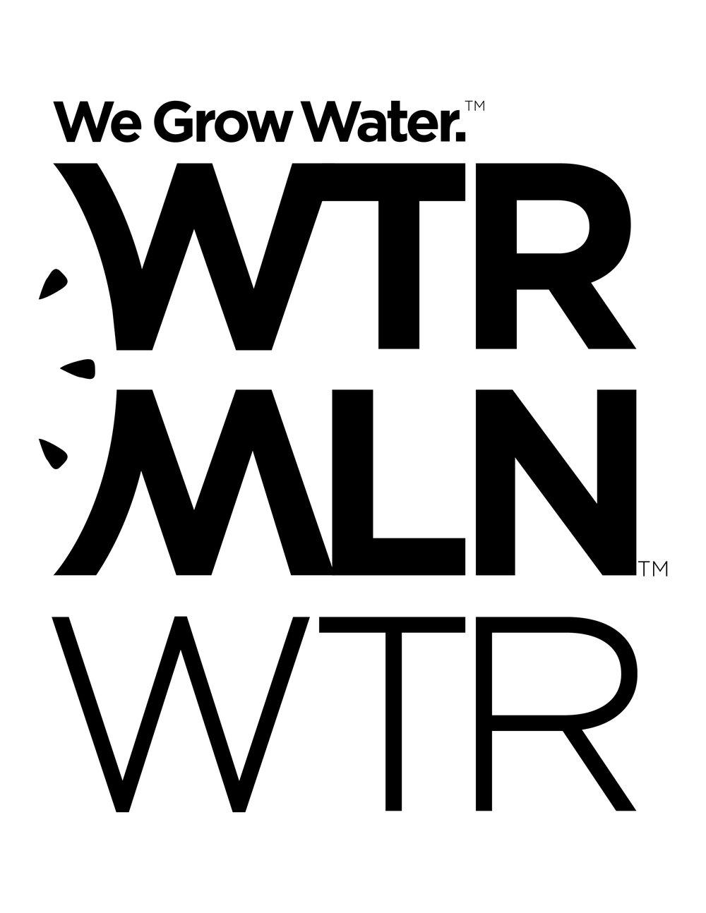 WTRMLN_white_LOGO.jpg