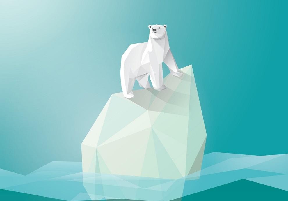 Polar-Bear-990.jpg