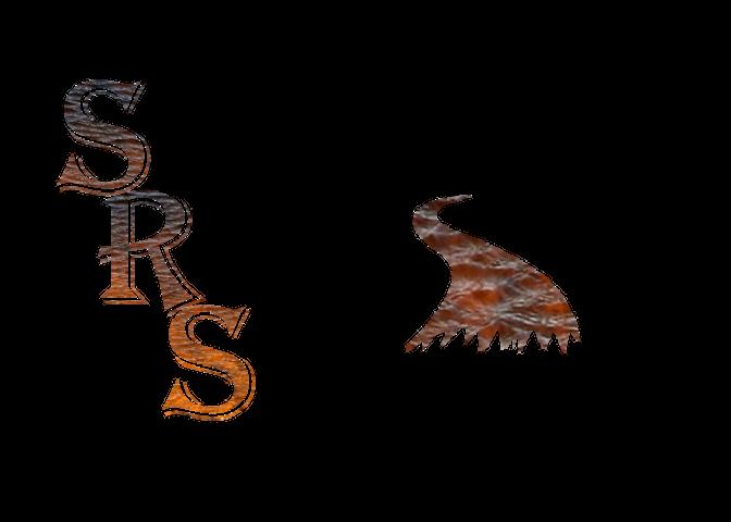 1st Run Logo(RESIZE).png
