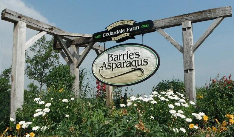 Barrie's Asparagus.jpg
