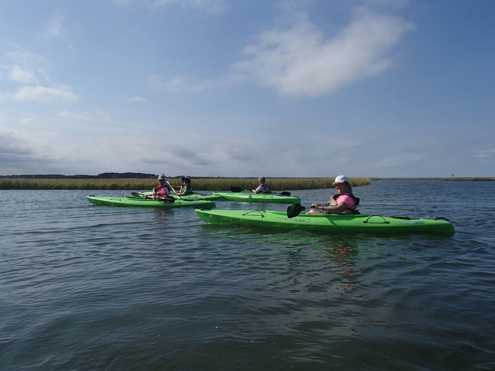 Occasional kayakers without vessels of their own use Coastal Kayak as a convenient place to launch into the bay. They would find it difficult and dangerous to maneuver around acres of poles and shellfish cages. Coastal Kayak photo