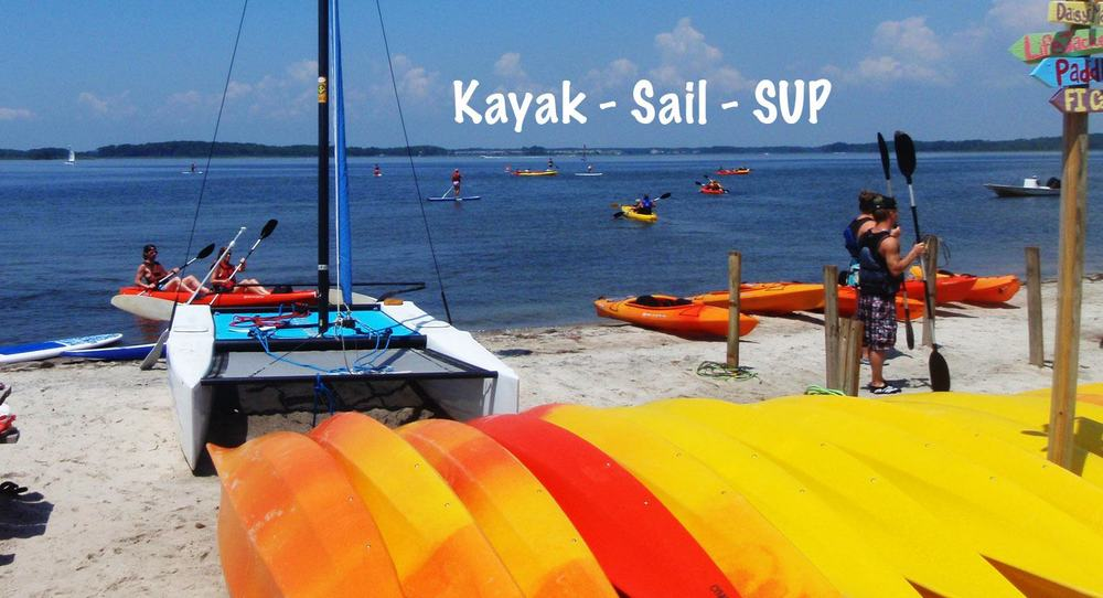 Coastal Kayak has a large number of repeat customers, for whom a forest of PVC poles will undoubtedly decrease the experience of paddling on the bay. With the start of the lease program, many repeat visitors are unlikely to return. Coastal Kayak photo