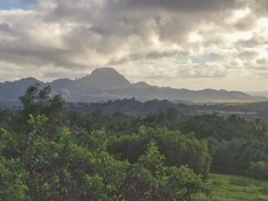 Early Morning at Kukuiolono