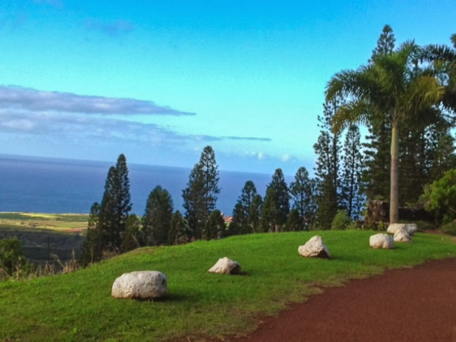 Walking Trail at Kukuiolono