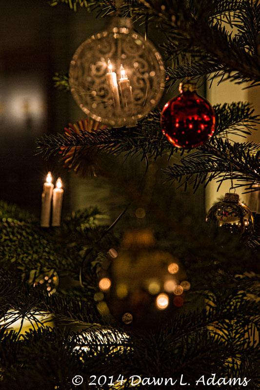 Dus - Christmas-25.JPG