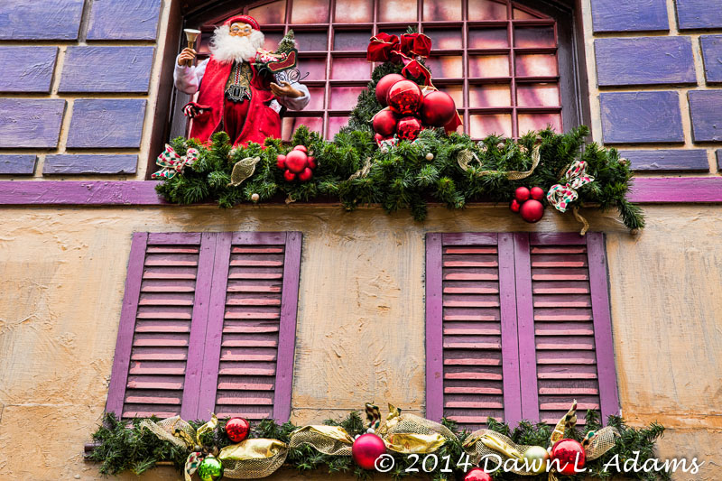 Dus - Christmas-6.JPG